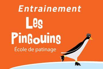 Entrainement des Pingouins